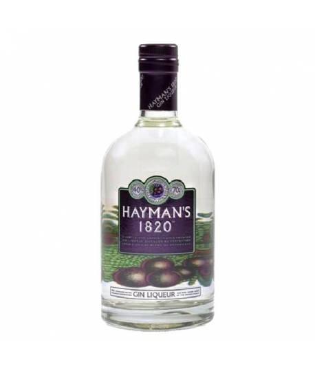 Hayman's 1820 Gin