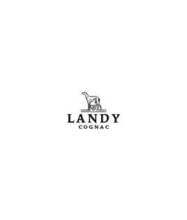 Landy Desir